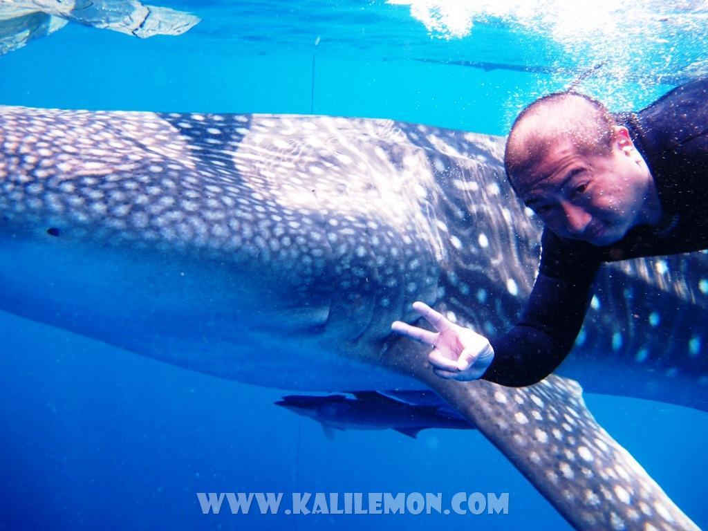 kalilemon Dive And Resort (16)
