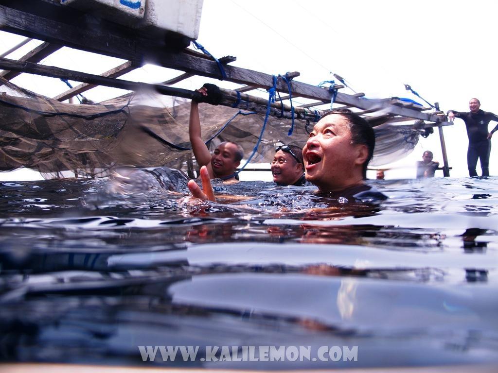 kalilemon Dive And Resort (19)